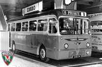 1958 Maudslay Reliance SVD114